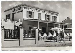 13 - LES SAINTES MARIES DE LA MER - Café Hôtel Restaurant Des Launes - Saintes Maries De La Mer