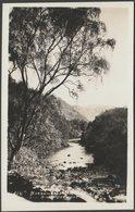 Borrowdale Birches And River Derwent, Cumberland, C.1930 - Pettitt RP Postcard - Cumberland/ Westmorland