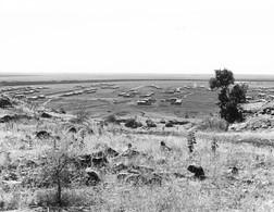 """Photo Soudan. Un Aspect Du """"Rahad Agricultural Scheme"""" Gigantesque Projet Agricole Photo Vivant Univers. - Afrika"""