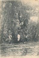 A P 738 -  C P A   AFRIQUE-    GABON - A TRAVERS L'OGOOUE - SAIGNANT UN PALMIER - Gabon