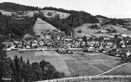 CP Suisse BE Berne Signau - BE Bern