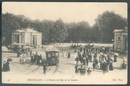 TRAM - CP De BRUXELLES - IXELLES Entrée Du Bois De La Cambre Tram N°291 Reliant Le Bois De La Cambre à La Palce Royale ( - Nahverkehr, Oberirdisch