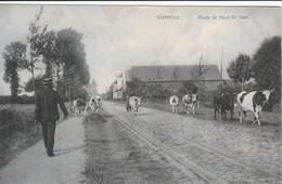 WATERLOO ROUTE DE MONT ST JEAN - Waterloo