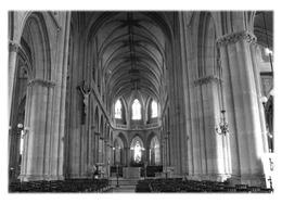 BELLEY - Intérieur De La Cathédrale - Belley