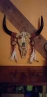 RESINE Neuve..Squelette Crâne De Bovin à L' Indienne - Animaux
