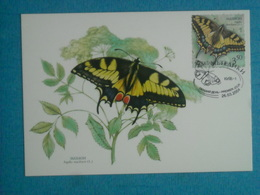 """PAPILLONS - Belle CP 1er Jour (26/03/2004) D''UKRAINE - """" Papilio Machaon"""""""" - Insectes"""