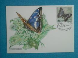 """PAPILLONS - Belle CP 1er Jour (26/03/2004) D''UKRAINE - """" Apatura Ilia"""""""" - Insectes"""