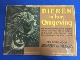 """RARE ANIMALS ANTIQUE BOOK FOR CHILDREN """" DIEREN IN HUN OMGEVING """" BY JONGES EN MEISJES NETHERLANDS - Boeken, Tijdschriften, Stripverhalen"""