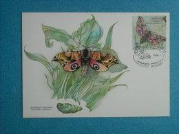 """PAPILLONS - Belle CP 1er Jour (26/03/2004) D''UKRAINE - """"Smerinthus  Ocellatus"""""""" - Insectes"""