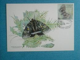 """PAPILLONS - Belle CP 1er Jour (26/03/2004) D''UKRAINE -  Catocala Fraxini"""""""" - Insectes"""