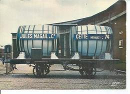 D2 - JULES MAGAIL & Cie - CETTE - HERAULT - 74   (   ) SETE - Sete (Cette)