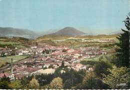 SENONES EN SALM - Ancienne Capitale De La Principauté De Salm - Vue Générale - Senones
