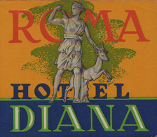 Roma - Italia Italy - Hotel Diana - Luggage Label Etichetta Valigia Etiquette - Hotel Labels
