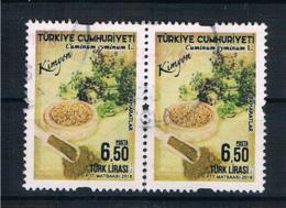 Türkei 2018 Mi.Nr. ? Waagr. Paar Gestempelt - 1921-... Republiek