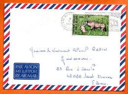AFARS ETDES ISSAS    DJIBOUTI   1974   Lettre Entière N° BC 171 - Afars Et Issas (1967-1977)