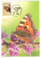 20e Anniversaire De La Volière Aux Papillons - Mars 2004 - La Petite Tortue Aglais Urticae - Cartes-Maximum
