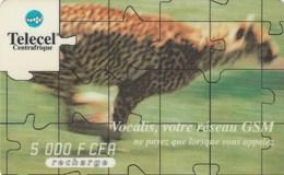 Central African Republic - Cheetah - Centrafricaine (République)