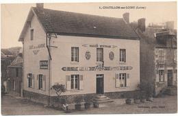 CHATILLON SUR LOIRE - La Maison Bertrand - Chatillon Sur Loire