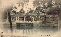 JAPON // JAPAN. WISTARIA CHINENSIS AT KAMEIDO - Japón