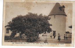 CPA 17200 ROYAN : ARS En RE : Un Vieux Moulin à Vent Transformé En Chalet - Ile De Ré