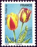 PO 254 - 1989-....
