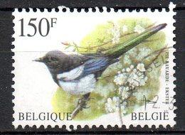 BELGIQUE. N°2696 Oblitéré De 1997. Pie. - Songbirds & Tree Dwellers