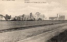 CELLES BRASSERIE Et Ferme De La Haye. Brouwerij.  Prés De Molembaix Et Pottes. Bon état - Celles