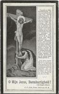 DP. DOMINICUS VERMEIR ° CASTEL 1862- + 1921 - Religion & Esotérisme