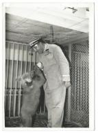 TRÈS RARE - Gardien Du Zoo De Vincennes Donnant Le Biberon à Un Ourson - Début AnnéeS 40 - Photo 13x18 Argentique - Photos