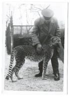 TRÈS RARE - Gardien Du Zoo De Vincennes Caressant Un Jeune Guépard - Début Années 40 - Photo 13x18 13x18 Argentique - Other