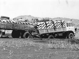 Photo Soudan Du Sud Incidents Et Accidents Des Transports Route Juba - Nairobi Photo Vivant Univers. - Afrika