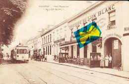 """VILVORDE - Hôtel Restaurant """"Au Lion Blanc"""" Carte Animée Avec Tramways 53 Devant """" Crédit - Anversois"""" - Vilvoorde"""