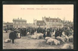 CPA Moulins, Place Aux Foires - Moulins