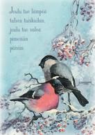 Birds - Bullfinches In Winter Landscape - Raimo Partanen - Natale