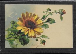 AK 0406  Blumengruss Um 1912 - Blumen