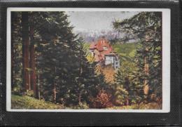 AK 0406  Semmering - Südbahnhotel / Verlag Ledermann Um 1910-20 - Semmering