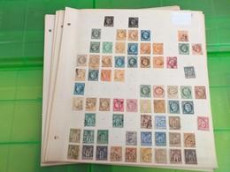 LOT N° E 60  FRANCE Une Collection Neufs * Ou Obl. Sur Page D'albums , Tous Etats - Timbres