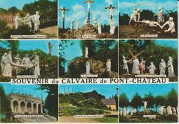 LOIRE ATLANTIQUE SOUVENIR DU CALVAIRE DE PONT-CHATEAU - Pontchâteau