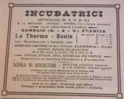 INCUBATRICI ARTIFICIALI GAMBAIS FRANCIA LA THERMO BOULE   1911 PUBBLICITA' RITAGLIATA DA GIORNALE (99) - Immagine Tagliata