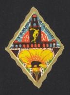 USA Cinderella (Dubois 8a) Used 1932 X Olympiad Los Angeles - United States