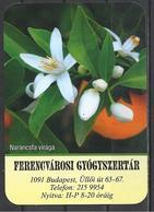 Hungary, The Flower Of Orange, Pharmacy Ad,  2020. - Kalenders