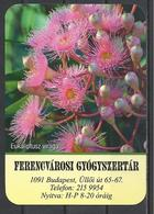 Hungary, The Flower Of Eucalyptus, Pharmacy Ad,  2020. - Kalenders