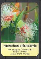 Hungary, The Tropical Apple Tree Flower(?), Pharmacy Ad,  2020. - Kalenders