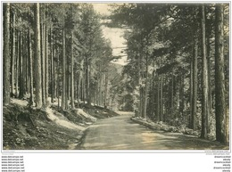 20 CORSE. Vizzavona. La Forêt Route D'Ajaccio. Carte De Luxe LL. - Francia