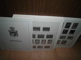Lindner T Liechtenstein FL 1985-2002 Komplett, Vordruckblätter (679) - Album & Raccoglitori
