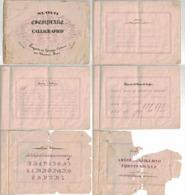 Nuovo Esemplare Calligrafico 1865 G. Caldora Castrovillari (C) - Altre Collezioni