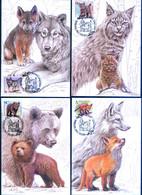 TH_ Belarus 2020 Wild Baby Animals Fauna 4 Maxicards MC - Postzegels