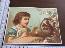 Une Fille Donnant à Mangé à Un écureuil - Andere