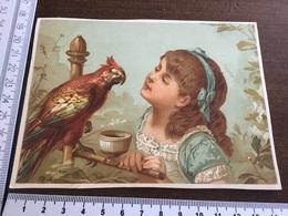 Une Fille Donnant à Mangé à Un Perroquet - Andere