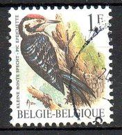BELGIQUE. N°2349 Oblitéré De 1990. Pic épeichette. - Specht- & Bartvögel